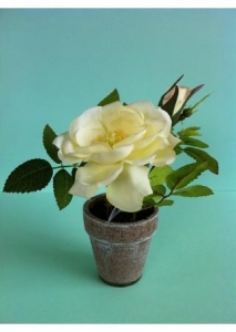 China Artificial Potted Rose Flower - Cream on sale