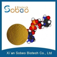 Coenzyme Q 10,Coenzyme USP,Coenzyme Q10 USP