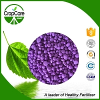 Best Price High Quality Compound NPK 15-15-15 20-20-20 TE Fertilizer