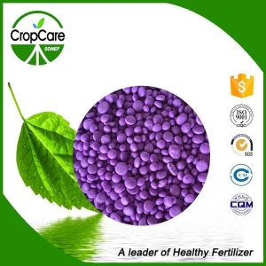 China Best Price High Quality Compound NPK 15-15-15 20-20-20 TE Fertilizer on sale
