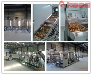 China Turnkey Project Mango Pulp/paste/jam/ Puree Processing Line on sale