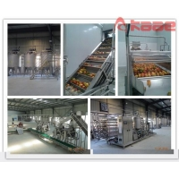 China Turnkey Project Industrial Peach/apricot/plum Pulp Jam Puree Processing Line on sale