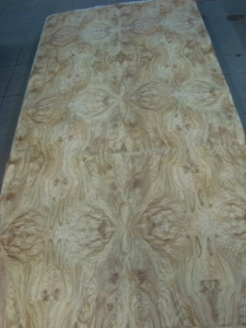 China olive ash panel-11 on sale