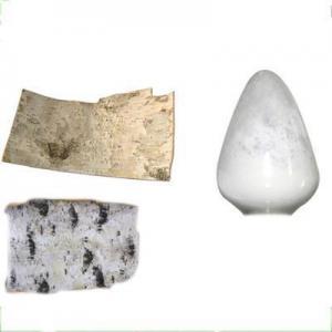 China natural tree plant white birch tree Betulinic Acid powder 98% for cosmetics on sale