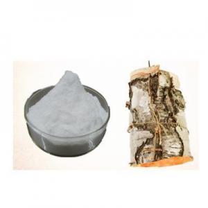China natural tree plant white birch tree Betulinic Acid powder 98% on sale