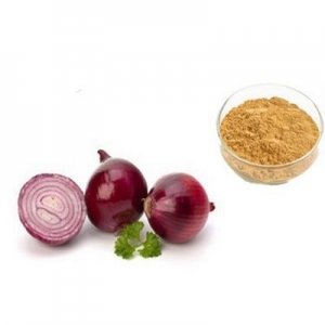China Low price onion extract /onion extract quercetin/onion peel extract on sale