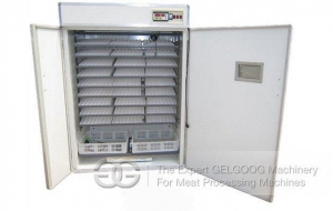 China 2015 Hot Selling Quail Egg Incubator on sale