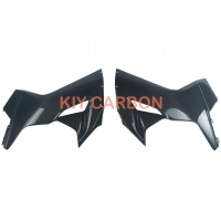 Motorcycle Parts MV Agusta Side Panels