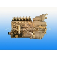 BP2025A Shangchai Vehicle Fuel injection pump