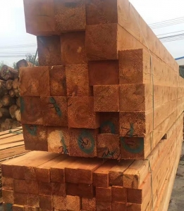 China Red Cedar on sale