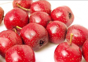 China Fruit&Vegetable Extract Hawthorn Berry Extract on sale