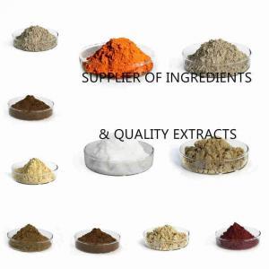 China Pure fresh jujube Fruit Extract powder on sale