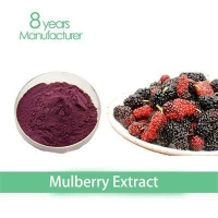 China high quality relieving a cough mulberry leaves extract DHJ on sale