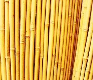 China Wholesale Bamboo Reed Fencing Mats on sale