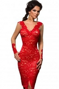 China New Arrivals Red Lace Applique Nude Illusion Long Sleeve Dress on sale