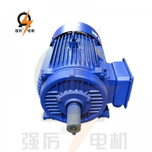 China IE3 premium efficiency squirrel cage three phase induction electric motor on sale