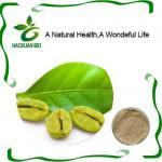 Green Coffee Bean Chlorogenic Acid