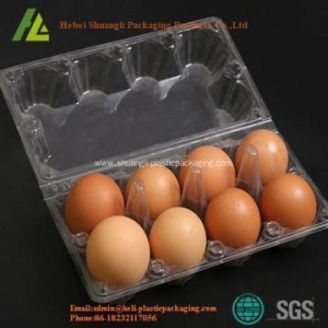 China disposable plastic fresh eggs packs tray on sale