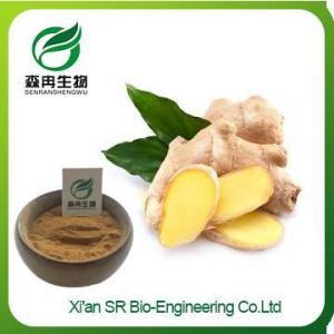 China Organic Ginger Powder, High Quality Ginger Powder, Wholesale Ginger Root Powder on sale