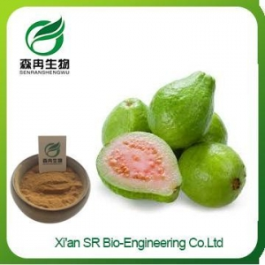China Guava Juice Powder, Organic Freeze Dried Guava Fruit Extract, Wholesale Guava Extract on sale