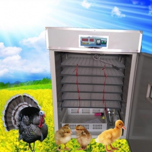 China Mini Size Egg Incubator quail egg incubator(1056) on sale