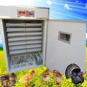 China Mini Size Egg Incubator chicken egg incubator hatching machine(1232) on sale