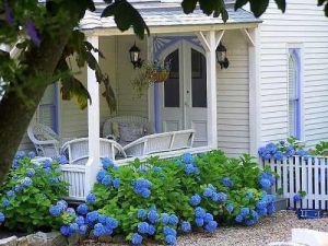 China Country Living: Cottage Style Decorating, Cottage Gardens, Decor Ideas on sale