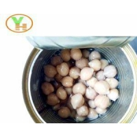 FDA 15 OZ Canned Chick Peas for High Quality in Best Price