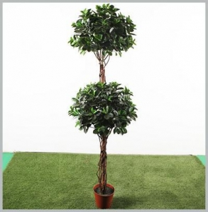 China One Trunk Ficus Tree 10111440616 on sale
