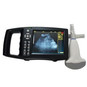 China Large Screen Veterinary B Ultrasound Diagnostic Apparatus And Pregnancy Scan Animal B Ultrasound Of on sale