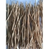 China Best Orange Color Natural Dried Wood Willow branch for sale