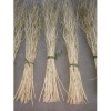 China pure natural willow coloured branches for sale