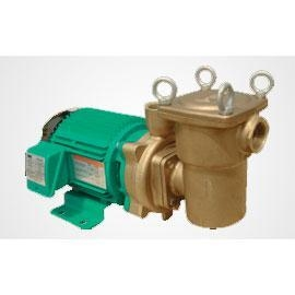 China Swimming pool filter pump PUF on sale