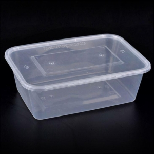 China BPA Free 650ml Disposable Rectangular Plastic Food Container with Lid on sale