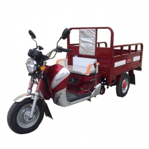 China 2017 Useful Adult New Electric Cargo/Passenger Pedal Tricycle for Sales on sale