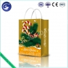 China 3D PP Ribbon Strip Shopping Bag for sale