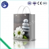 China Promotional 3D Plastic PP Lenticuler Gift Wrapping Shopping Bag for sale