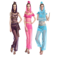 Princess Jasmine Genie Belly Dancer Arabian Nights Fancy Dress Costume