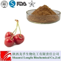 China 100% Natural Acerola Cherry Powder Vitamin C Organic on sale