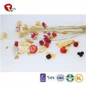 China TTN Chinese Bulk Wholesale Fruit Freeze Dried Fruit For Healthy Snacks on sale