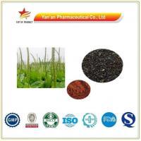 Herb Psyllium Extract/Plantain Seed Extract Powder