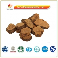 Chinese Herbal Medicine He Shou Wu/fo Ti Root/polygonum Multiflorum