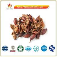 Chinese Herbs Jin Ying Zi/Rosa Laevigata/Cherokee Rose