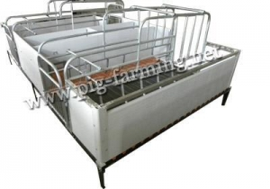 China Pig Farrowing Crate & Gestation Stall on sale