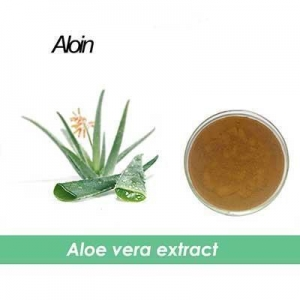China natural Aloe Vera Gel Extract 20:1 on sale