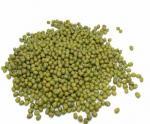 2015 New Crop Green Mung Bean,Green Mung Bean Seeds from China