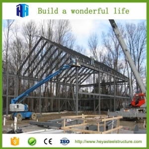 China low cost industrial shed designs on sale