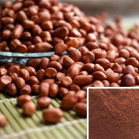 China Peanut skin extract on sale