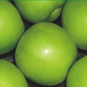 China Apples Granny Smith on sale