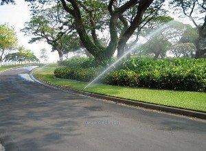 China automatic sprinkler irrigation on sale